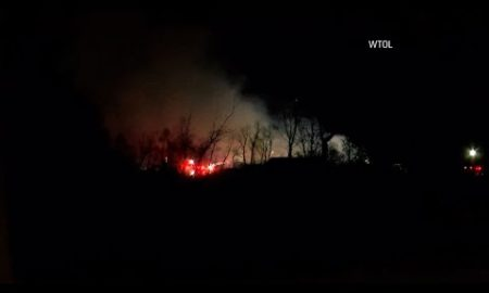 AP: 10 animals dead after fire in Ohio wildlife park